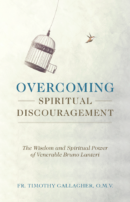 Overcoming Spiritual Discouragement book cover